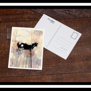 carte-postale Bretagne : vache et campagne