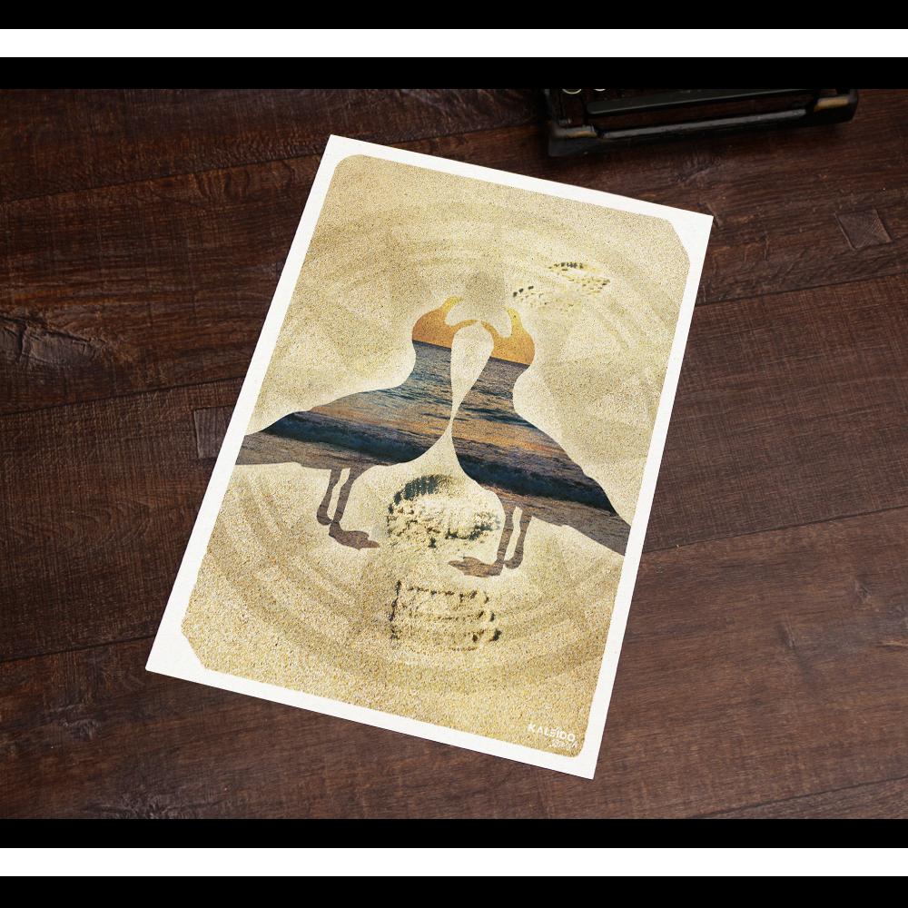 affiche bretagne : goelands bretons pour déco ensoleillée